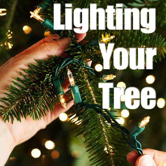 Lighting Your Christmas Tree