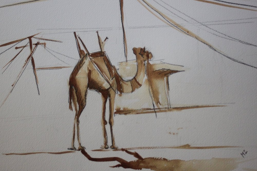 "camel , Coffee on paper 11"" X 14"""