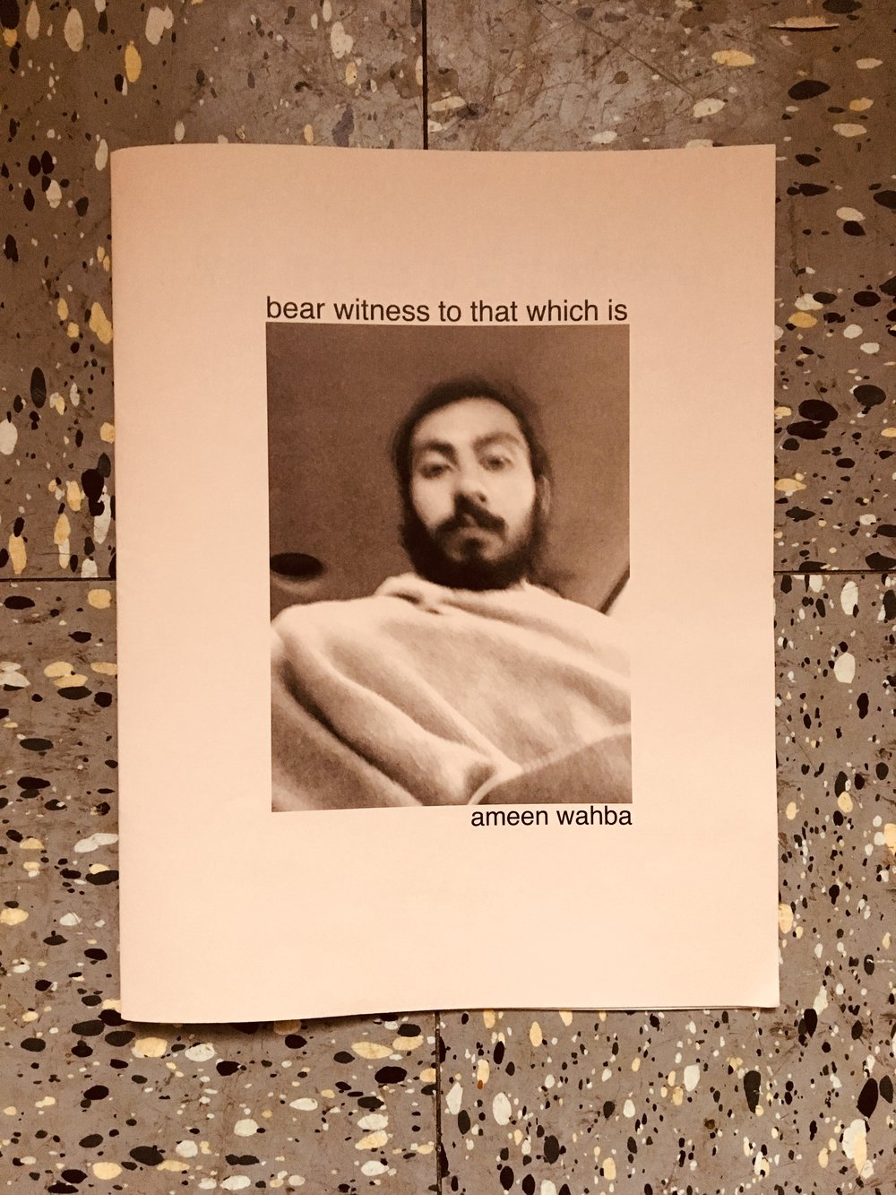 bear witness to that which is by ameen wahba