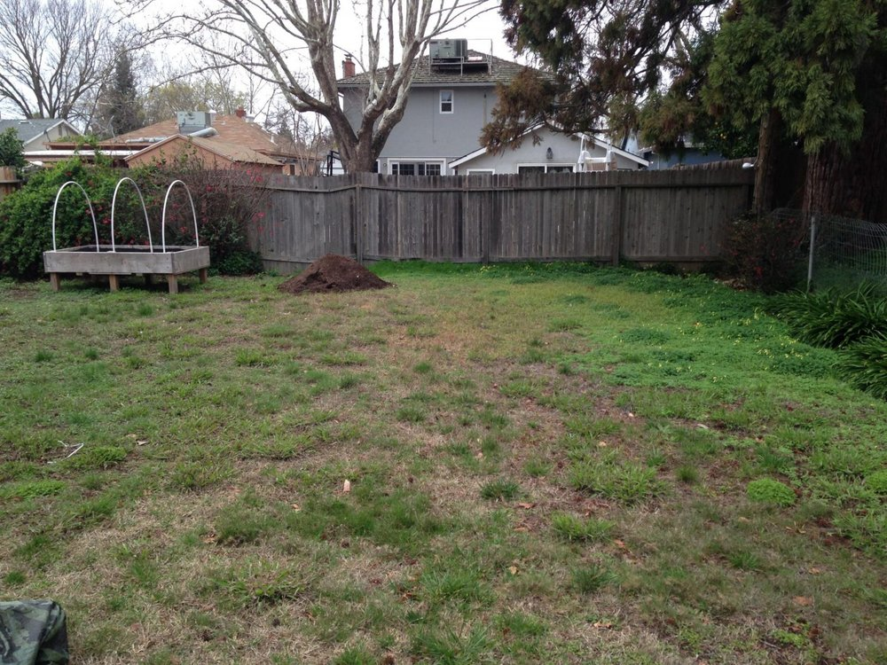 Before-Backyard-1600x1200.jpg