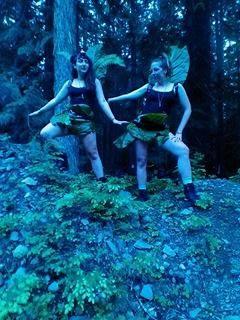 seacharms forest.jpg