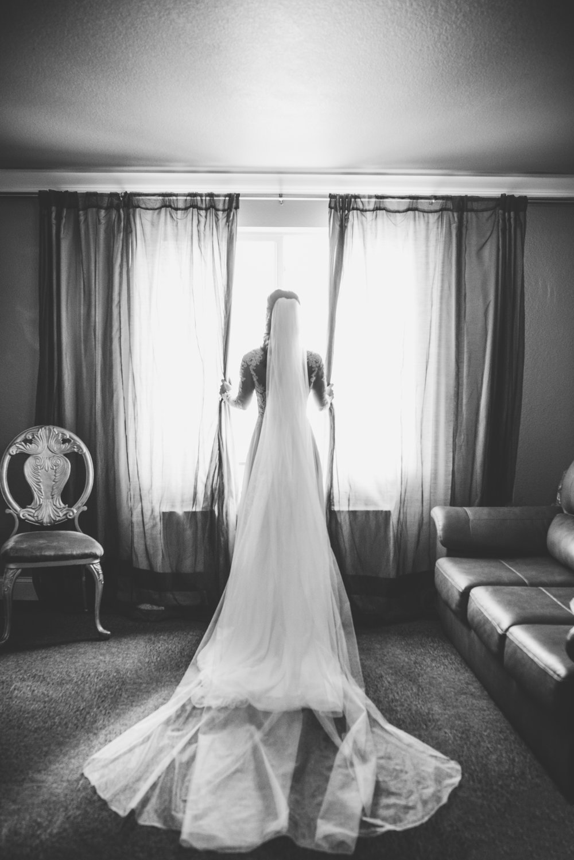 Ruxin John Photography Wedding Photography Wisconsin