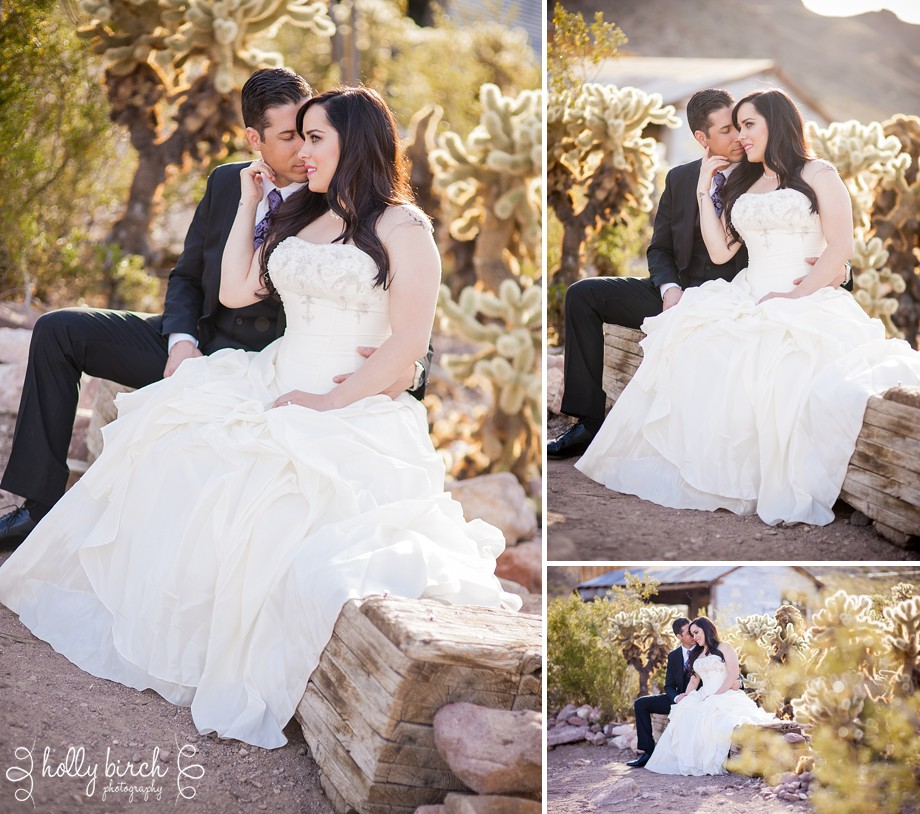 Modern-Champaign-wedding-photographer-desert-session_0319
