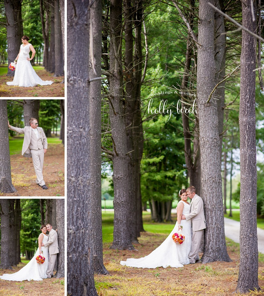 bride and groom tree pictures
