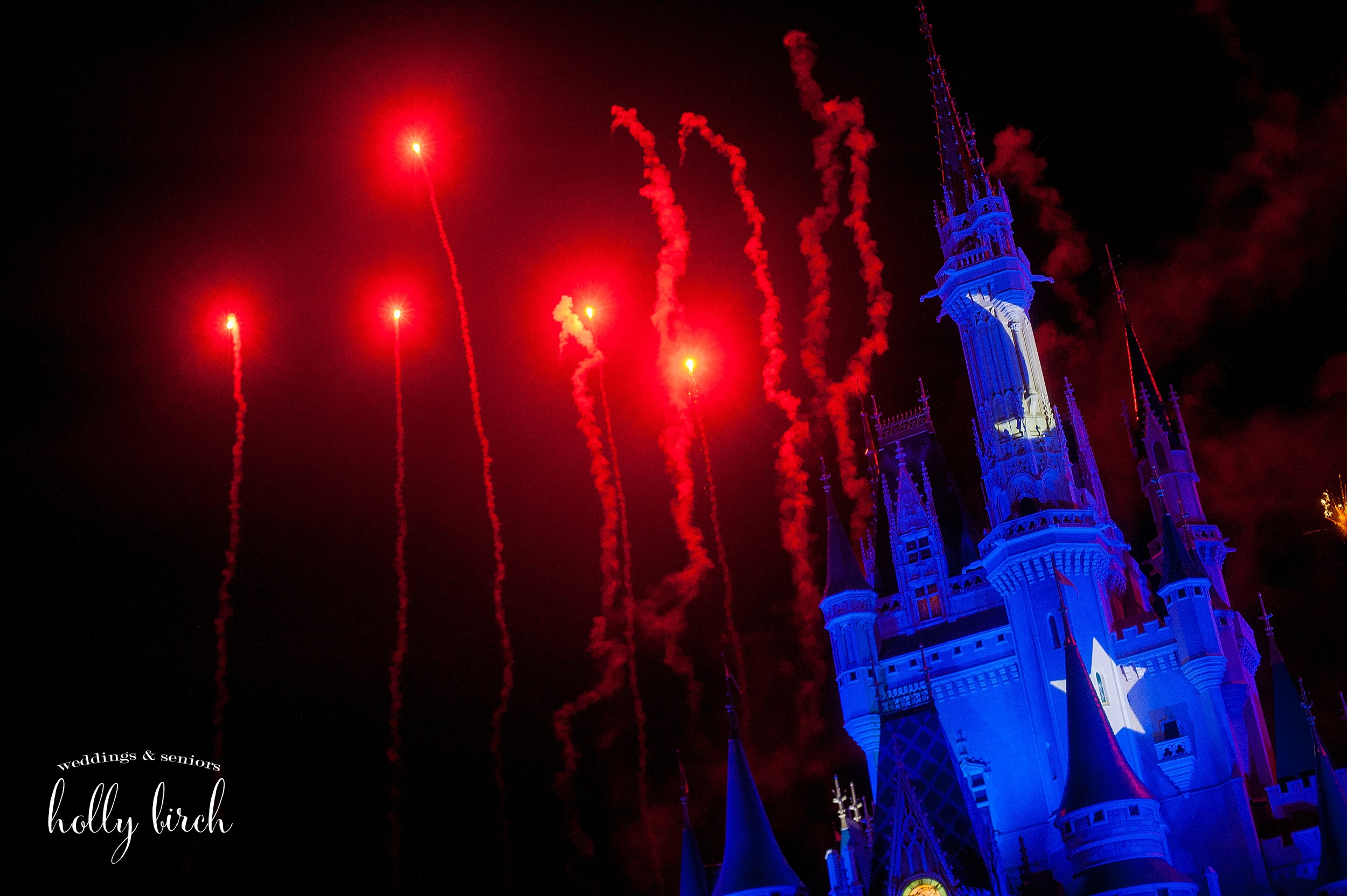 Fantasia illuminations firewords
