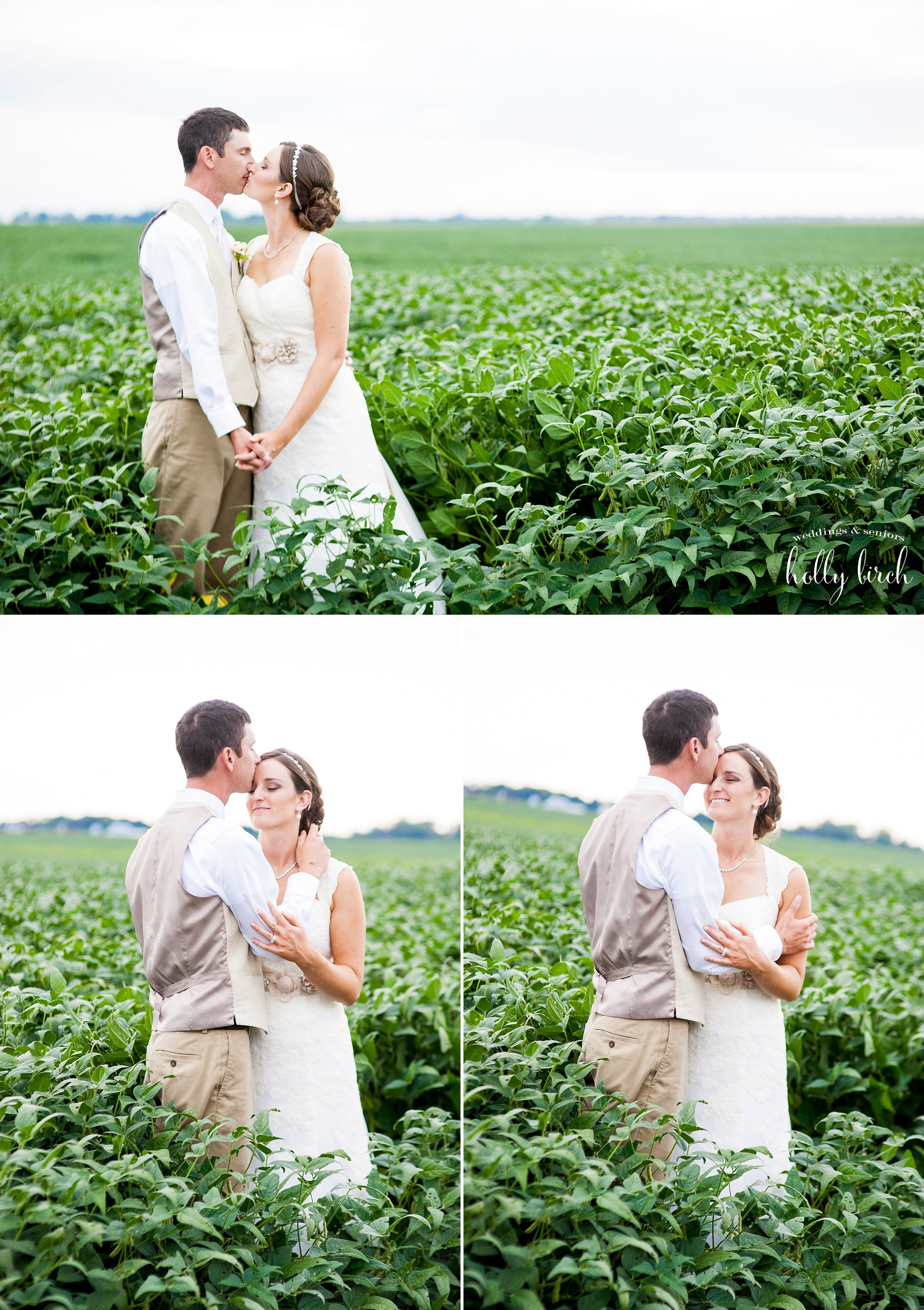 bride and groom in soybean field
