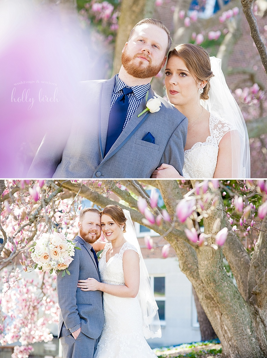 Magnolia tree wedding portraits