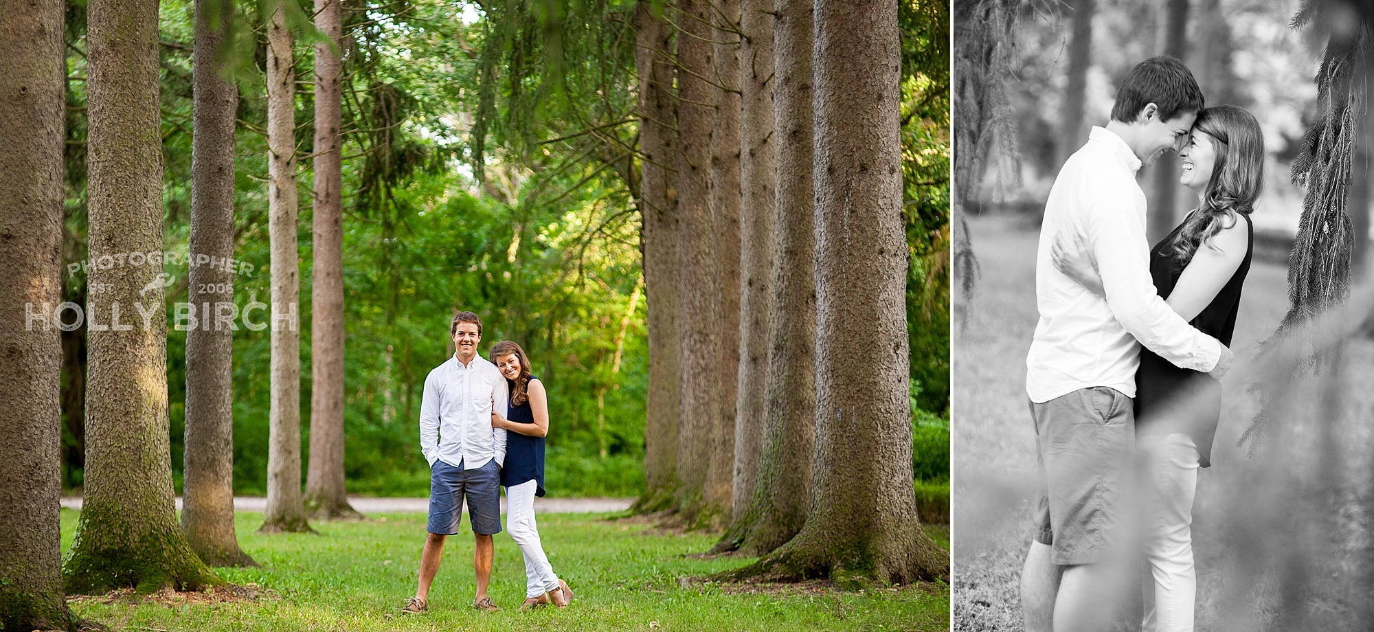 tall tree rows with engaged couple