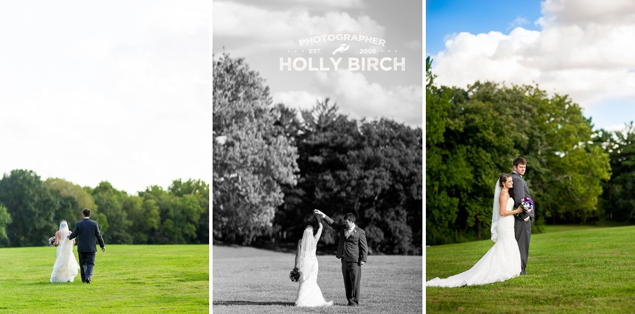 open meadow wedding image with blue skies