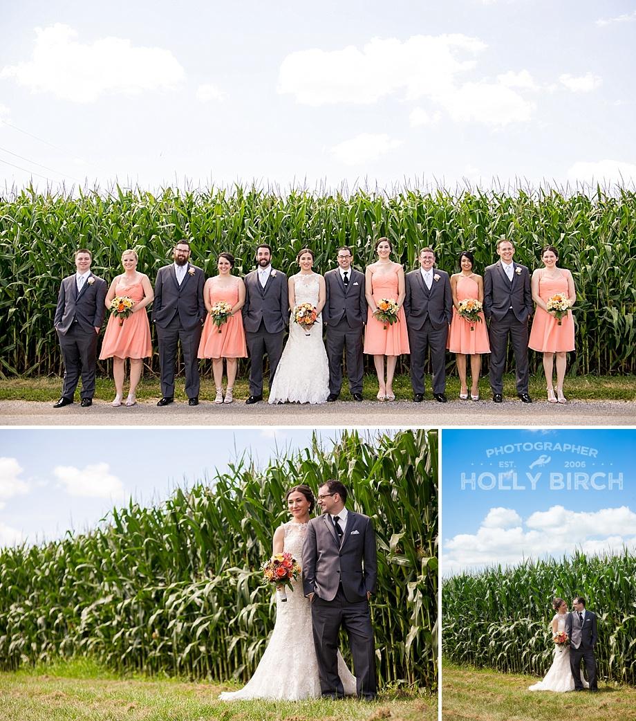 wedding party with cornfields
