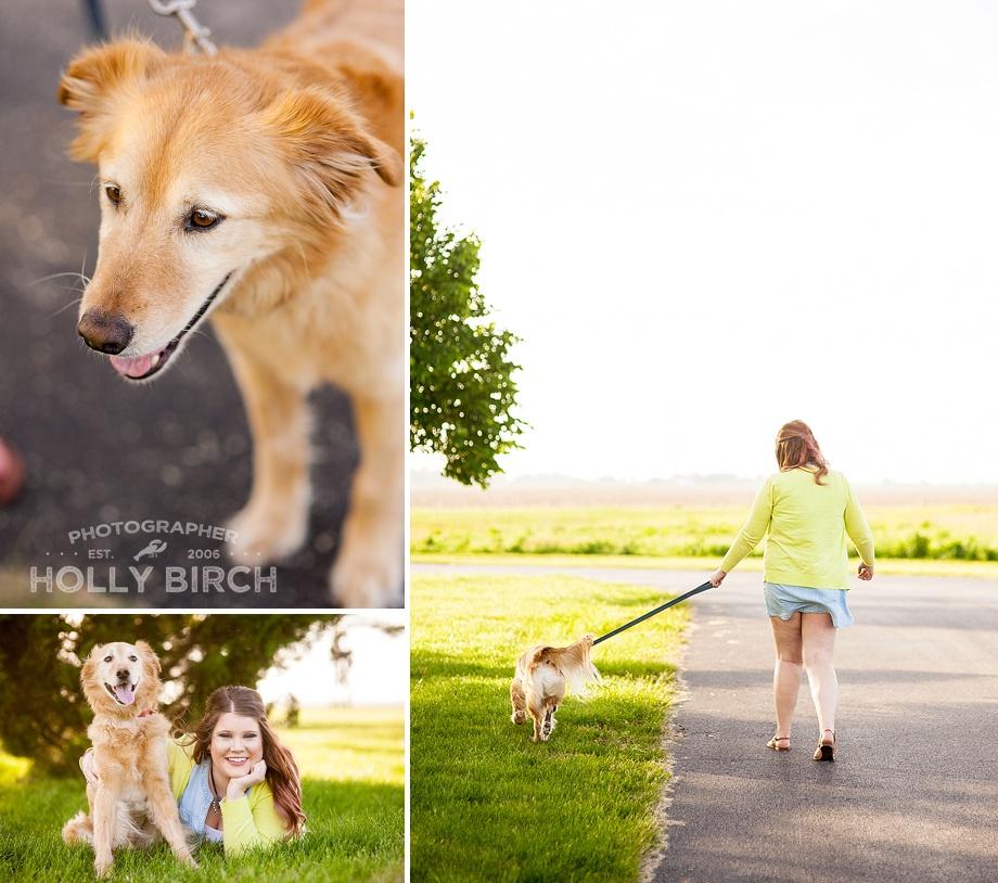 dog session at Porter Park in Southwest Champaign