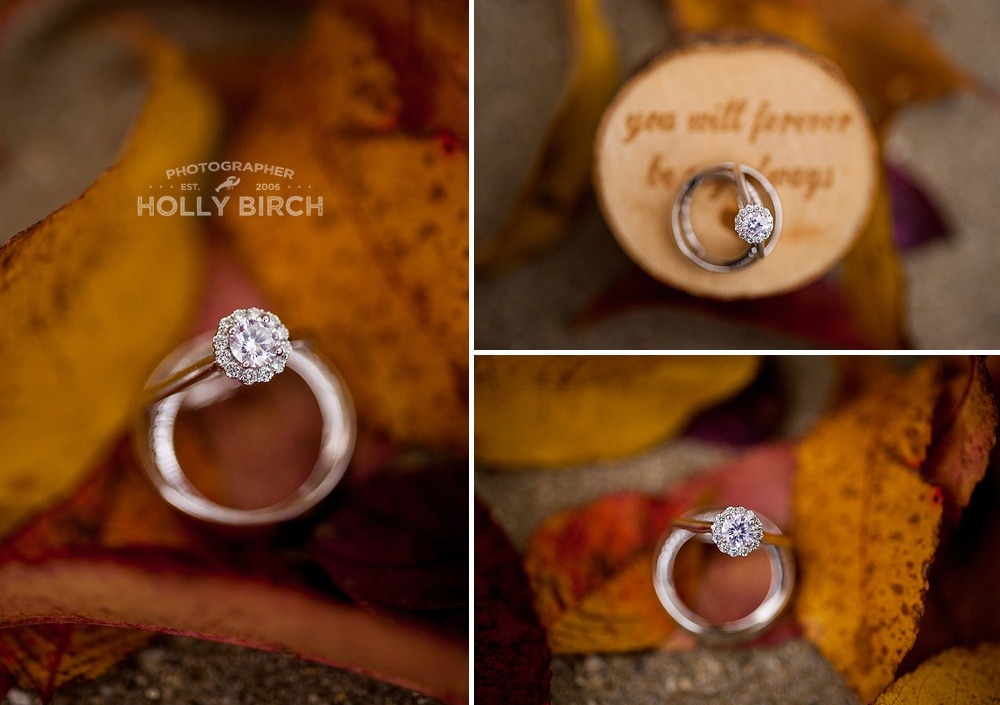 fall leaves ring details shots