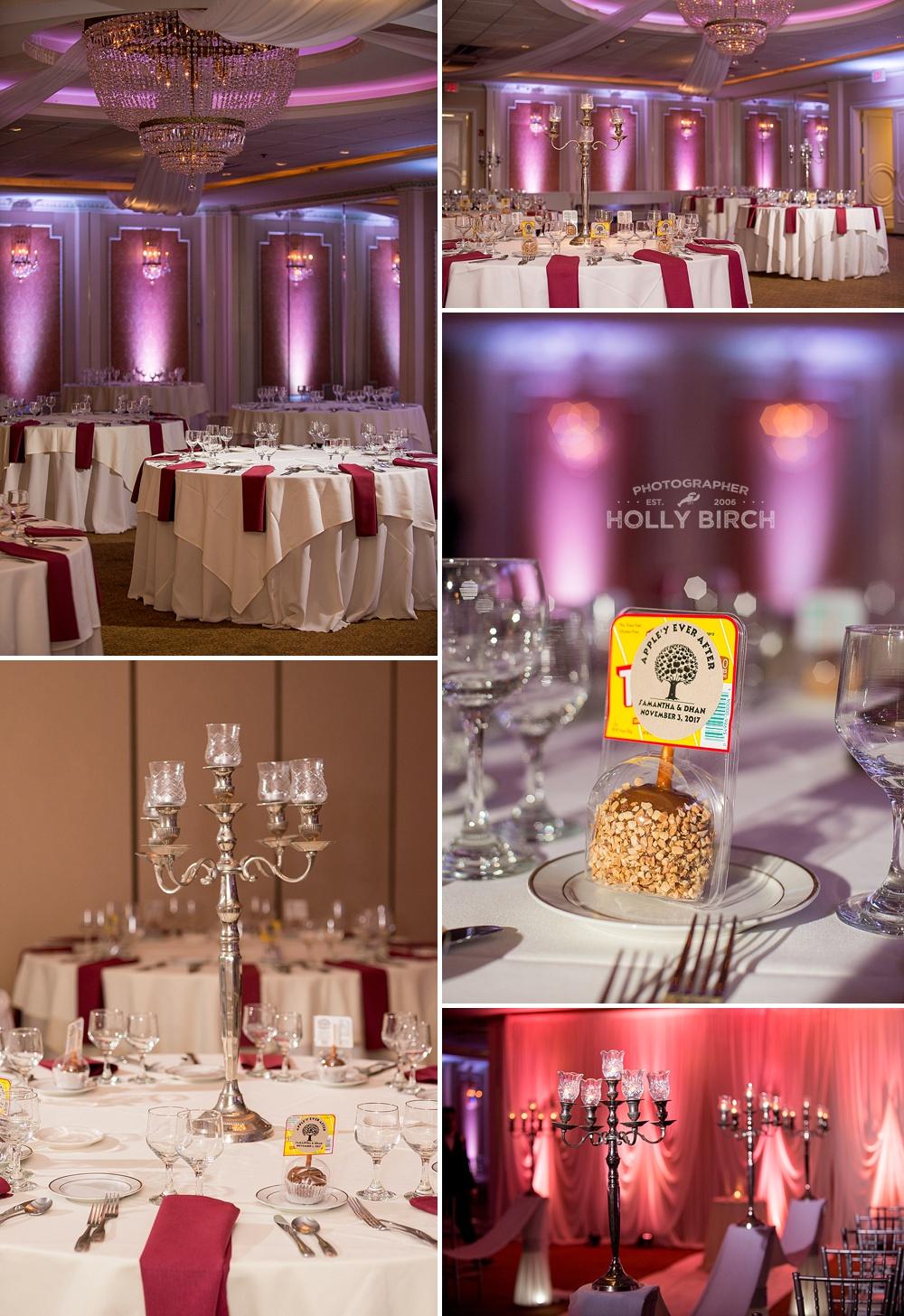 Buffalo-Grove-IL-Chicago-suburbs-wedding-Astoria-ballroom_3047.jpg