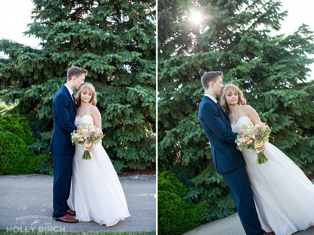 bride and groom portraits with evergreen tree