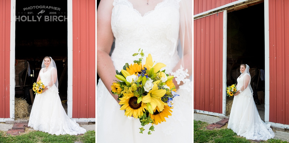 Kankakee-Elks-Country-Club-La-Villetta-rural-farm-wedding_3762.jpg