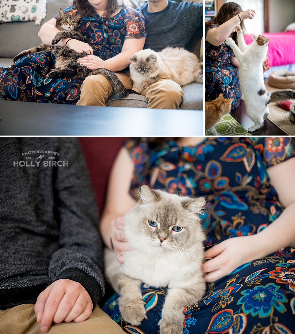 lifestyle-session-with-cats-fur-babies_4236.jpg