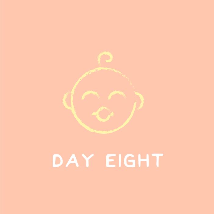 day_8.jpg