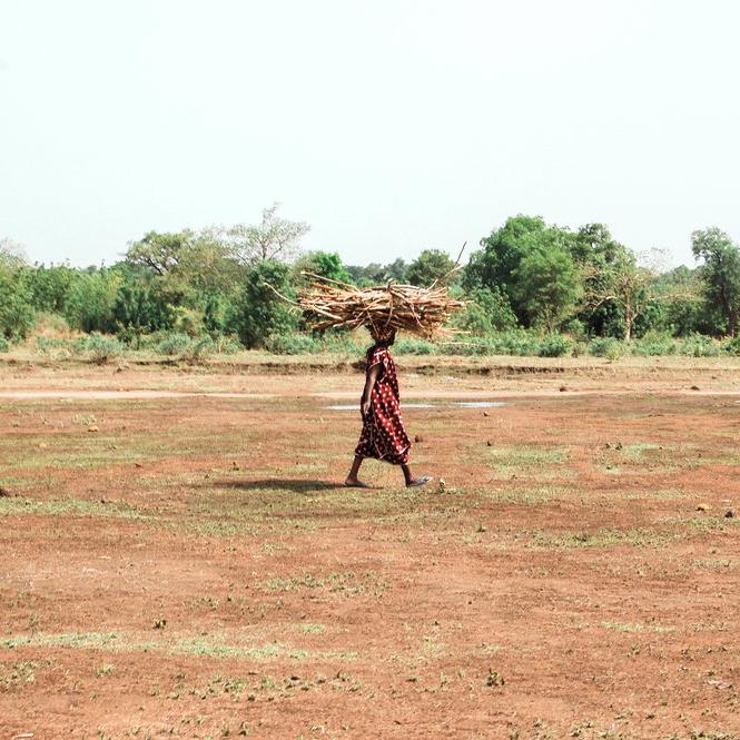 Mali - Tanima · 2010