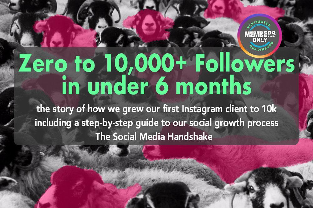How did we grow a client from ZERO to 10,000+ followers in under six months?