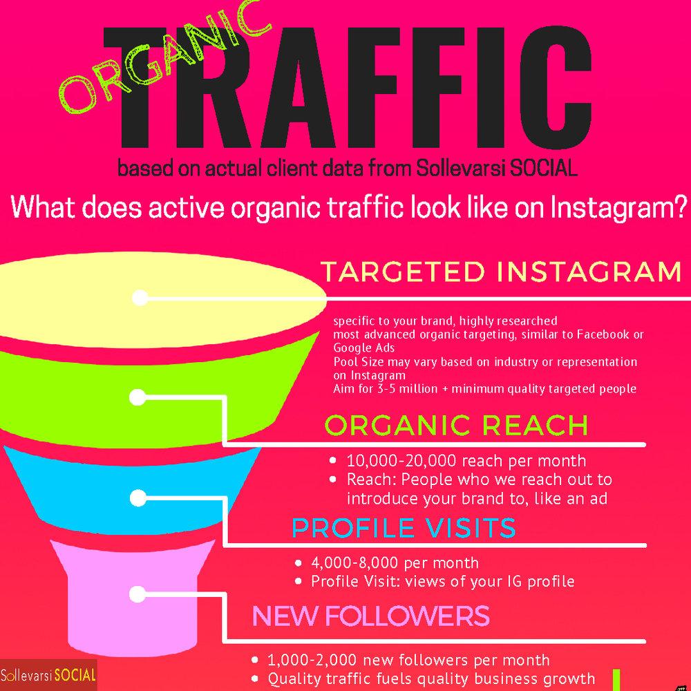 Organic Traffic Infographic_Traffic Funnel.jpg