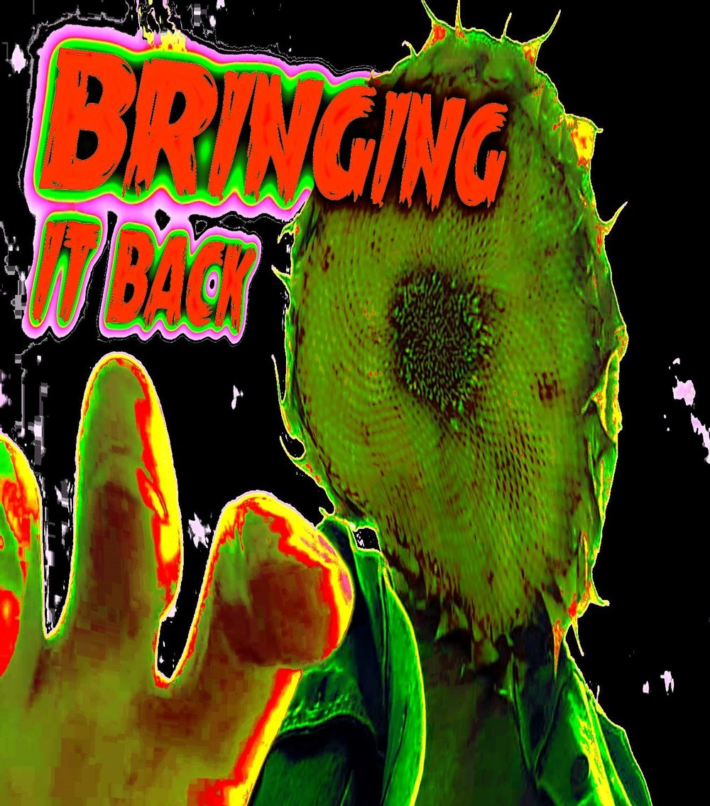 New Release   - BRINGING IT BACK featuring MISSING THINGS