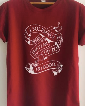 I solemnly swear -