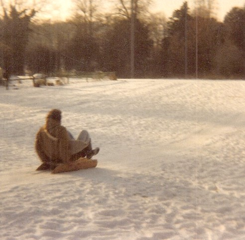 Dad hurtling down the lawns on a toboggan.    Photo  © Caroline Jane Knight