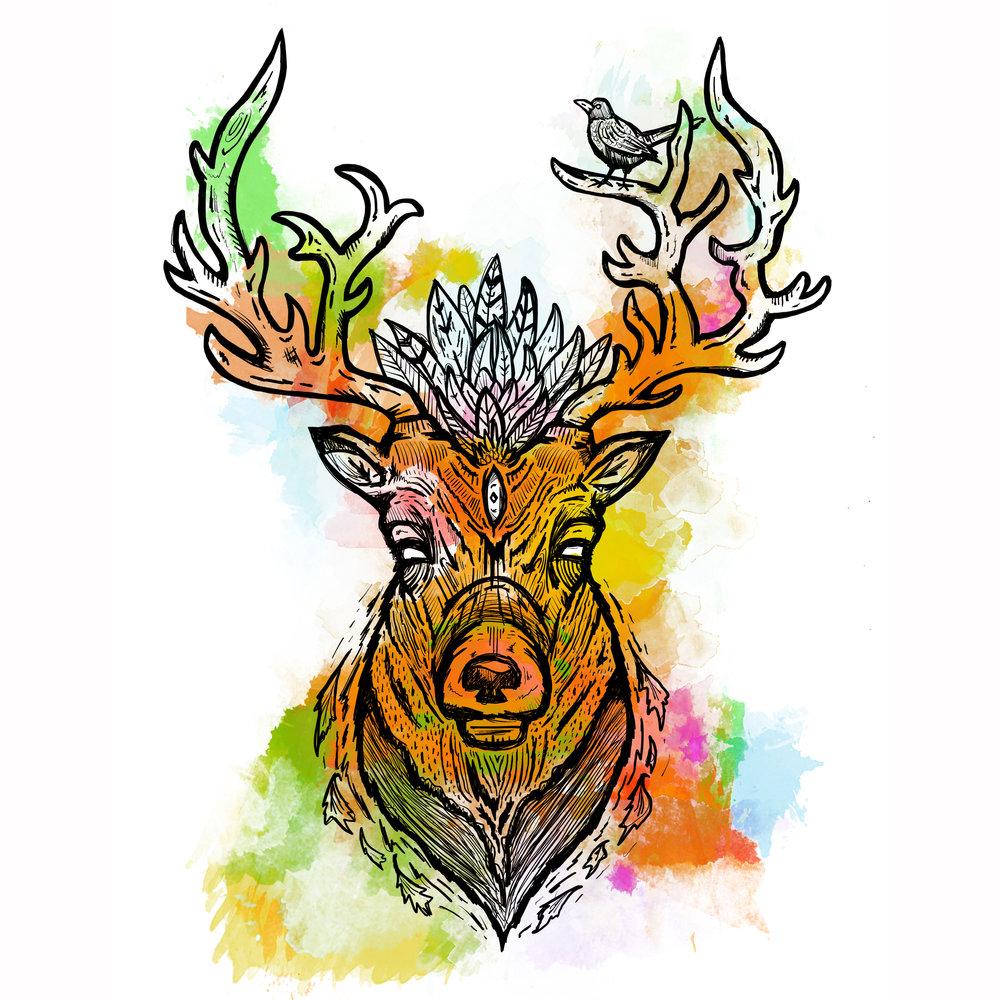 Deerly Colour.jpg