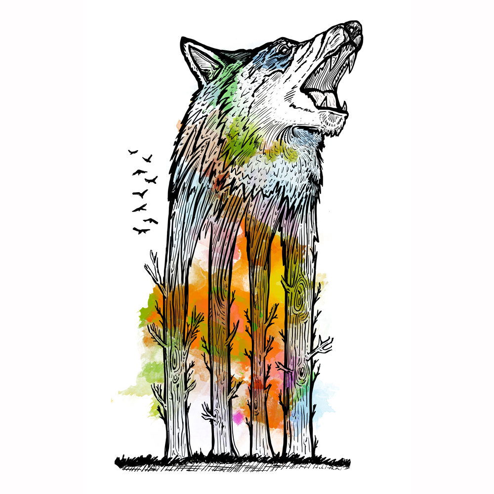 Wolf Tree Colour.jpg