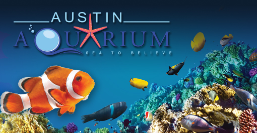 two-general-admission-tickets-to-the-austin-aquarium-up-to-50-4993472-regular.jpg