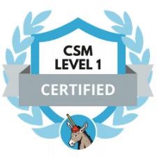 Customer Success Training Certification Badge.png