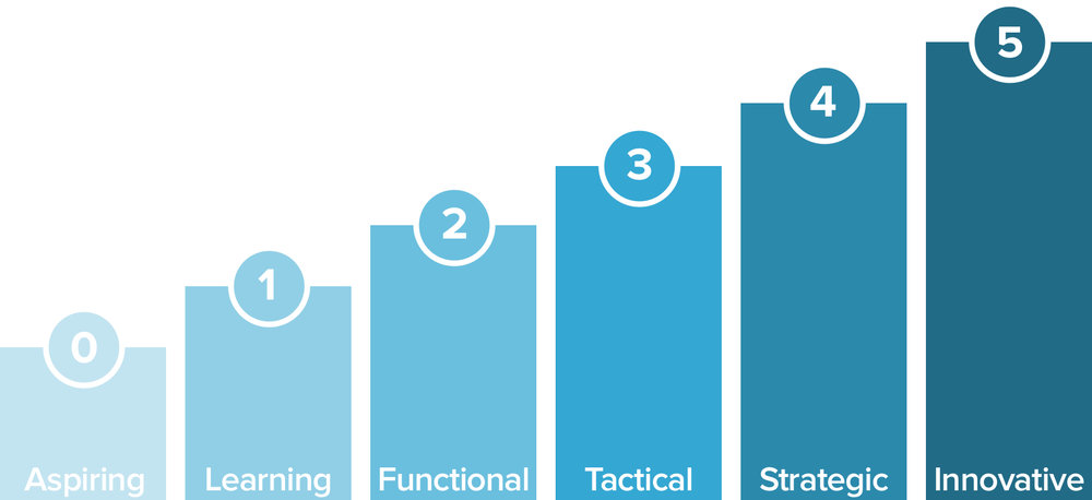 The Customer Success Manager Capability Maturity Model