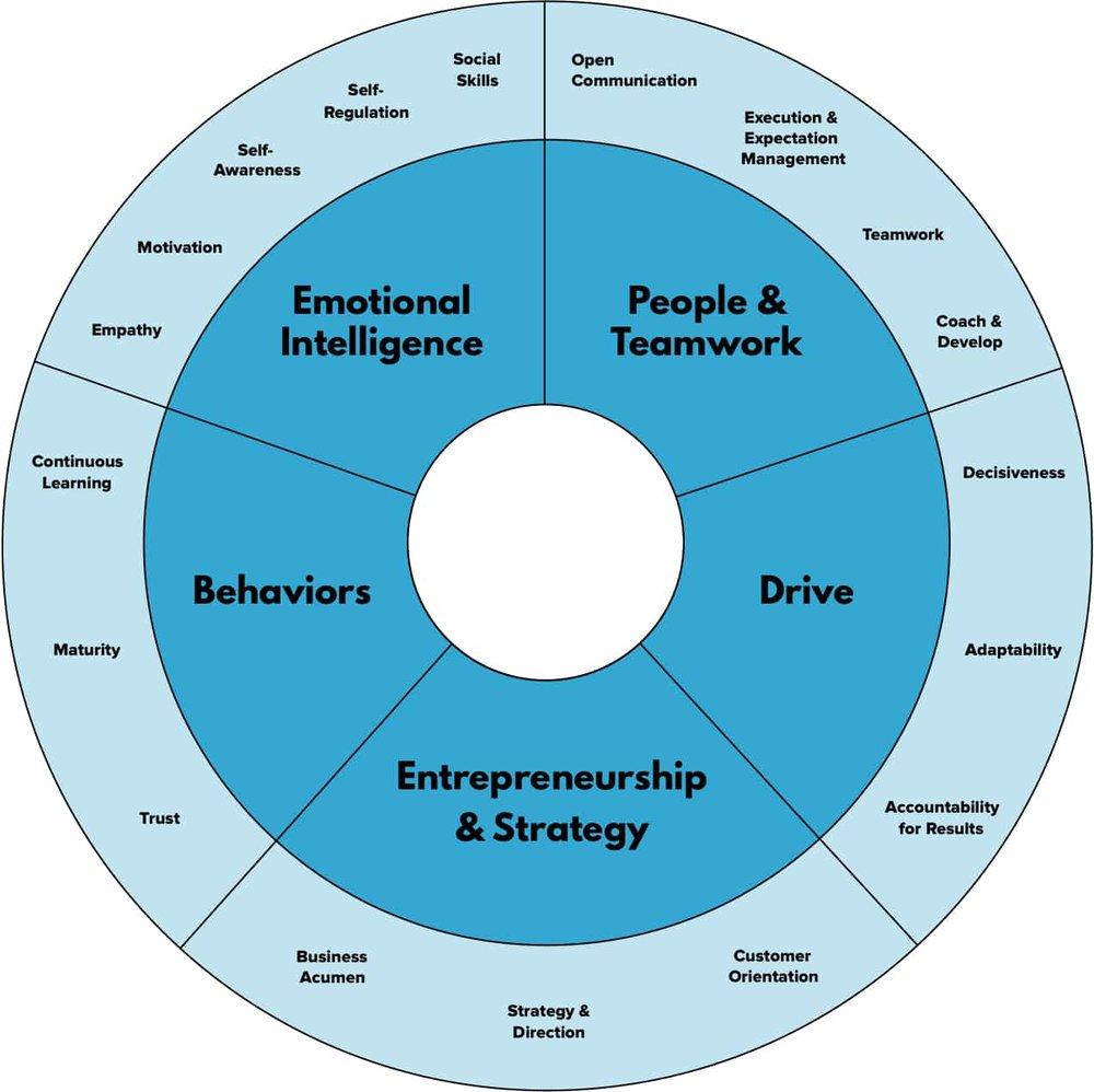 Customer Success Competency Model.jpg