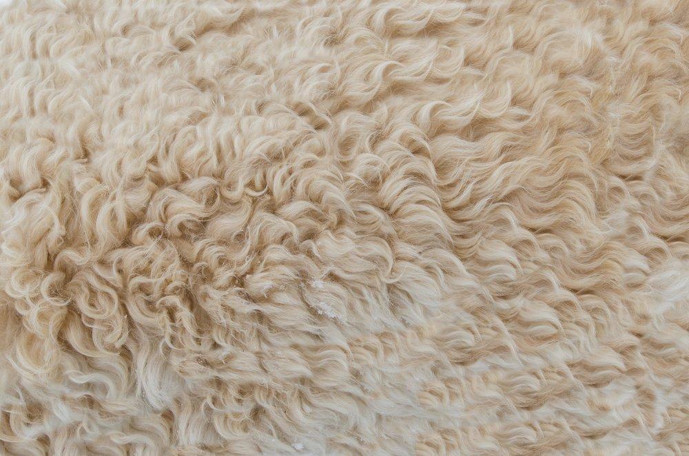 wool-manufacturers.jpg