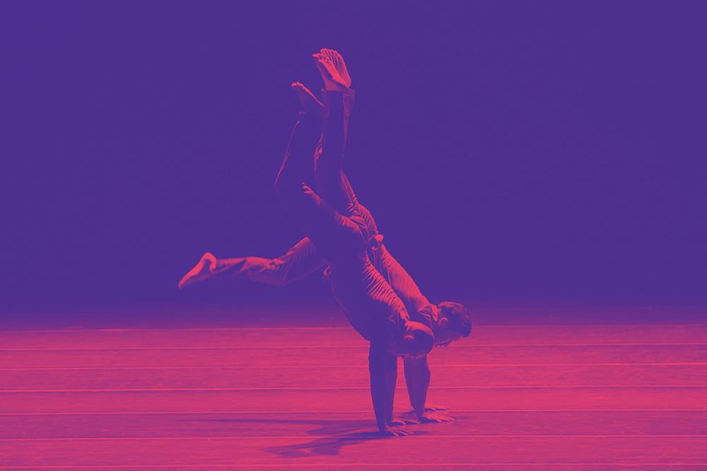 Equilibrium_roxo_rosa.jpg