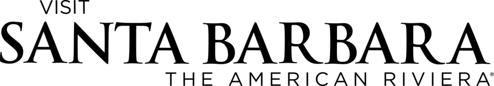 VSB_Logo_Wordmark_Black.png