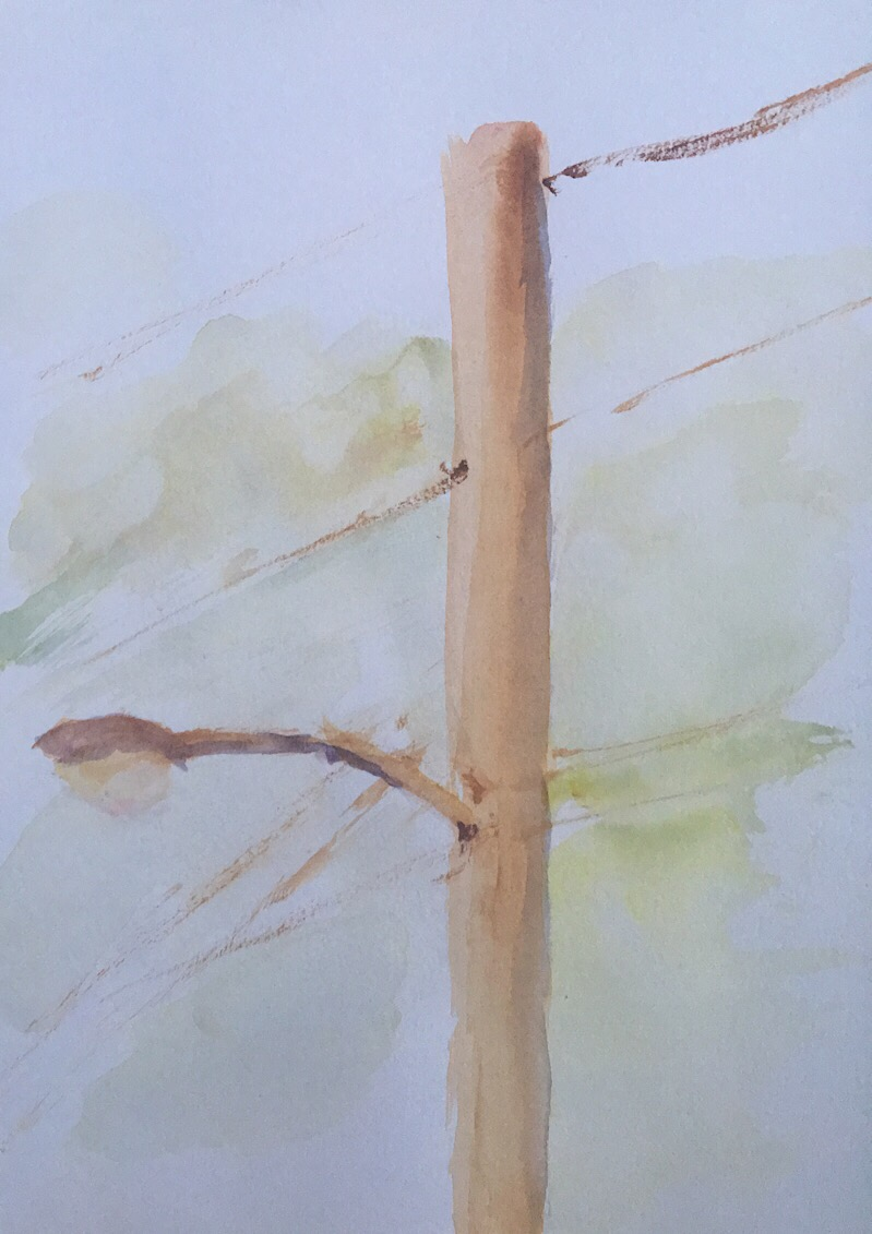 "Geoff Watson, ""Utility pole,"" watercolor on paper, 4"" x 6,"" 2017."