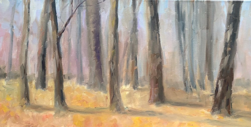 "Geoff Watson, ""Cabin John Woods in January,"" oil on linen, 12"" x 24,"" 2018."