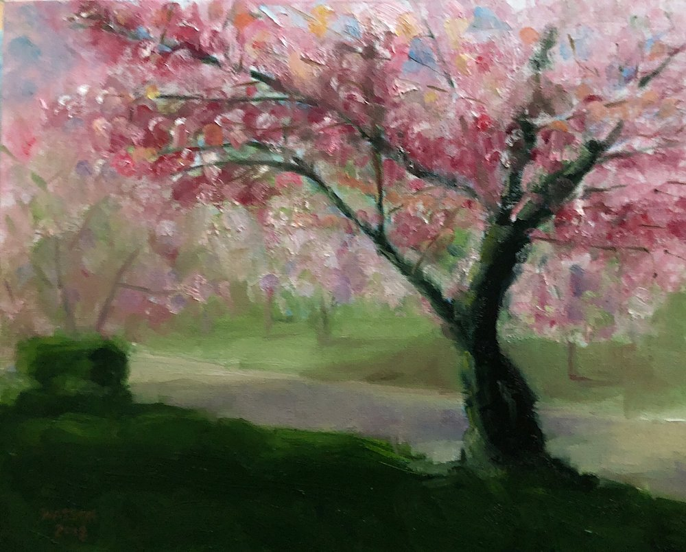 "Geoff Watson, ""Cherry blossoms along a road,"" oil on canvas panel, 11"" x 14,"" 2018."