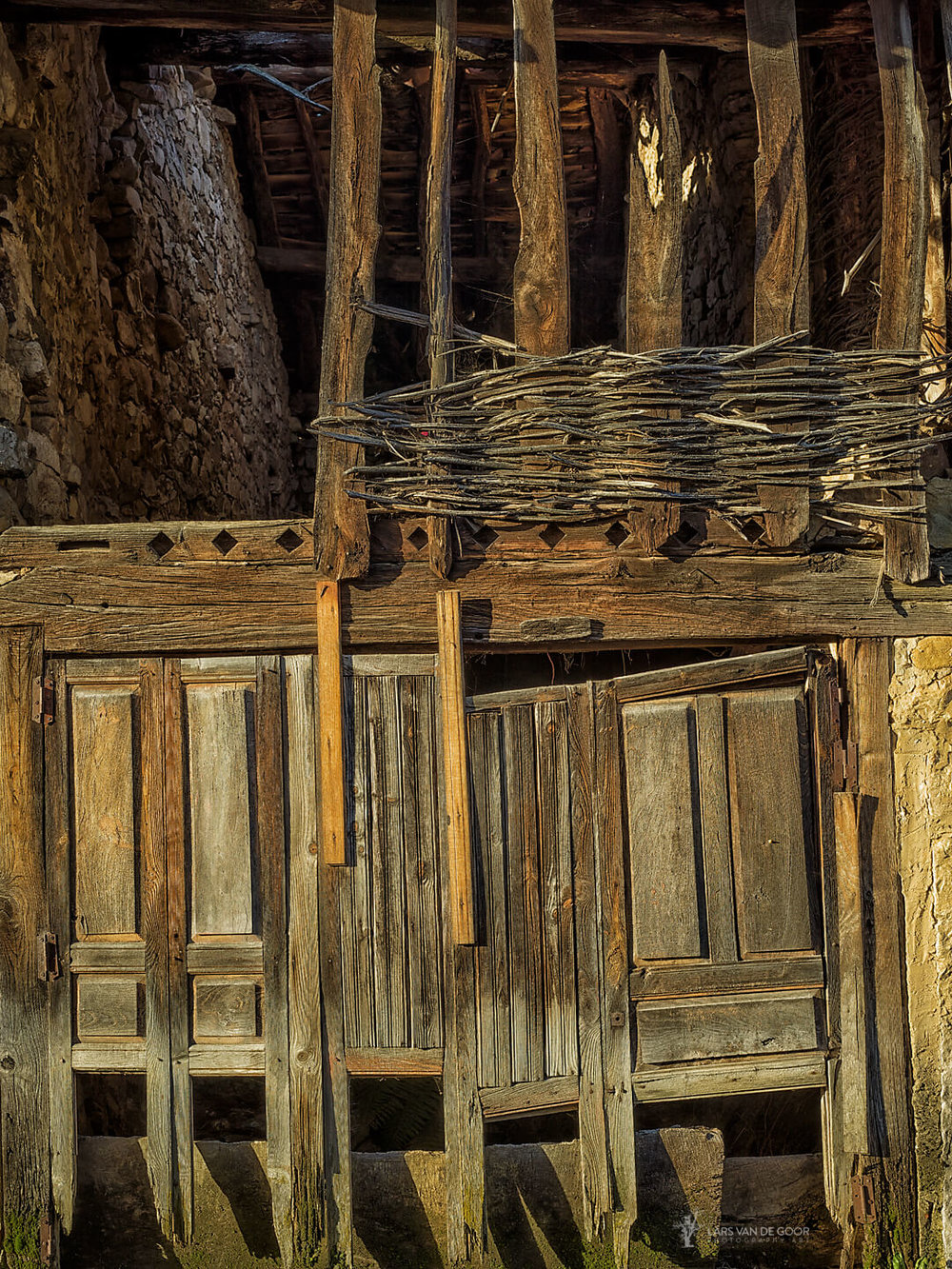 Soto wood.jpg