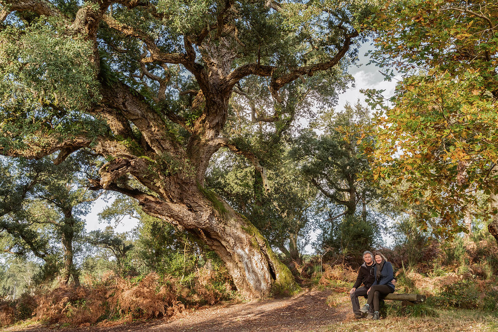 Sitting together under an old cork oak. Lac de Léon in France