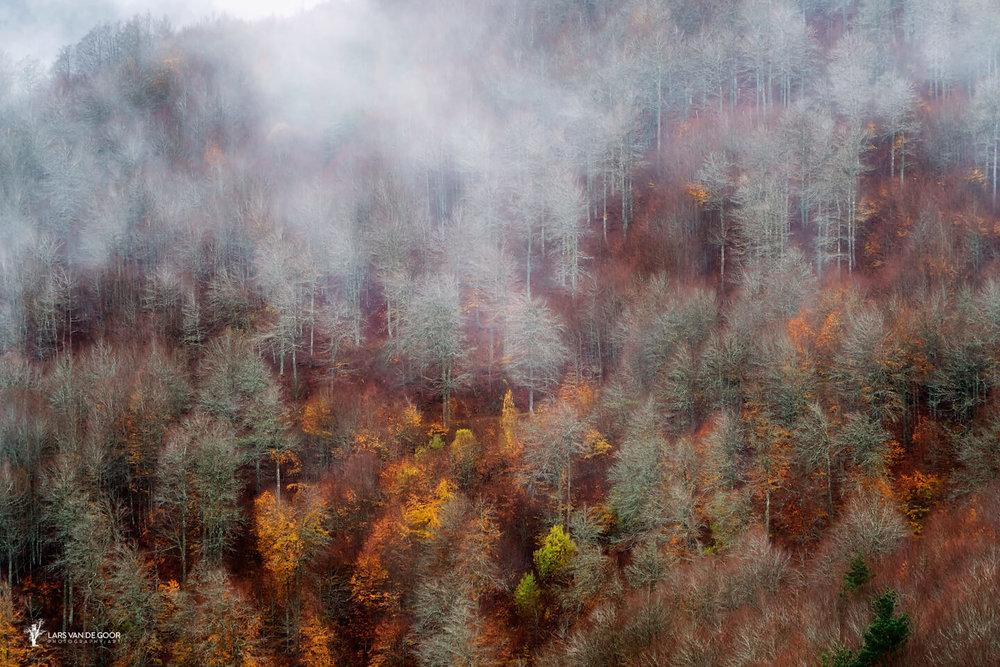 Autumn Pyrenees