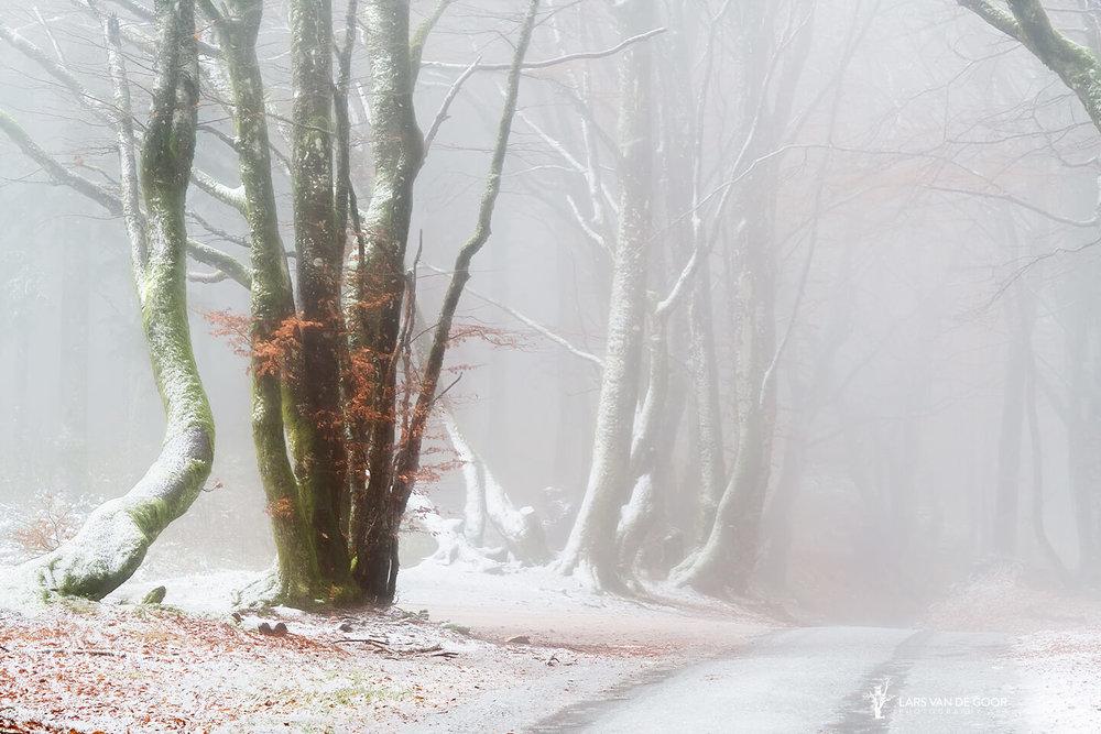Bibracte road.jpg