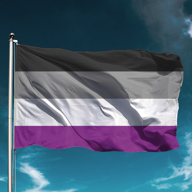asexual-flag_800x800.png