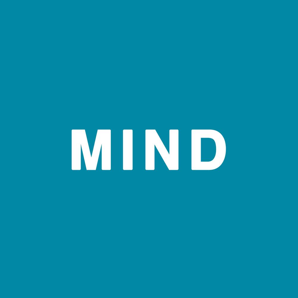 mind2.png