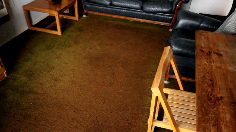 carpet small.jpg