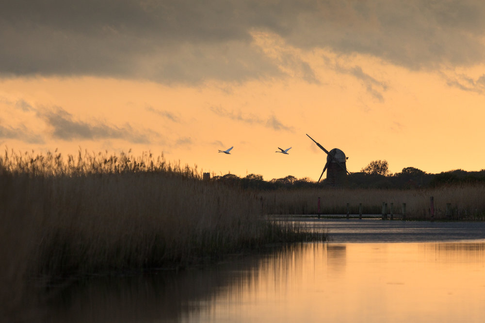 Dusk at Martham Broad - West Somerton, Norfolk