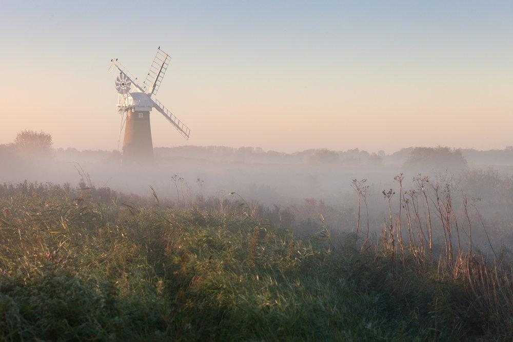 Soft morning light on St Benet's drainage mill - Thurne, Norfolk