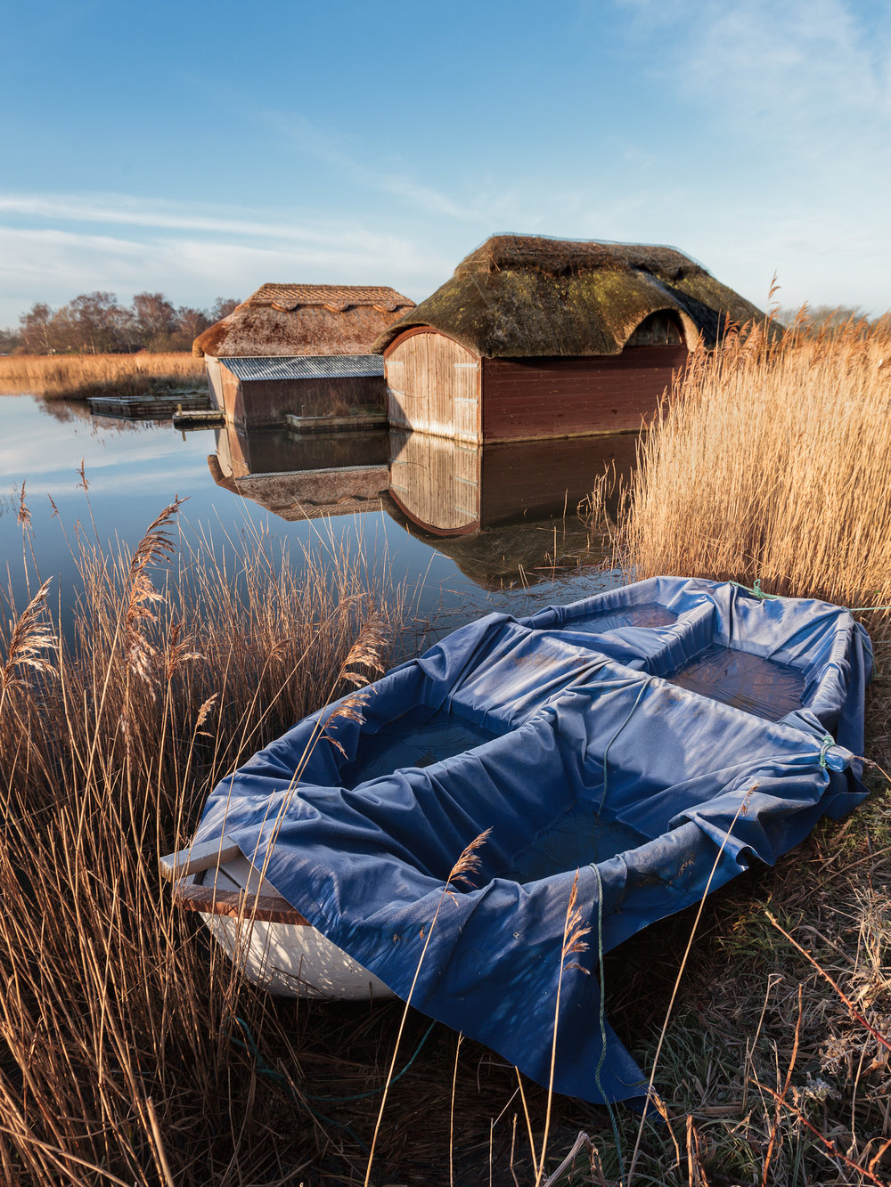 Winter at Hickling Broad, Norfolk