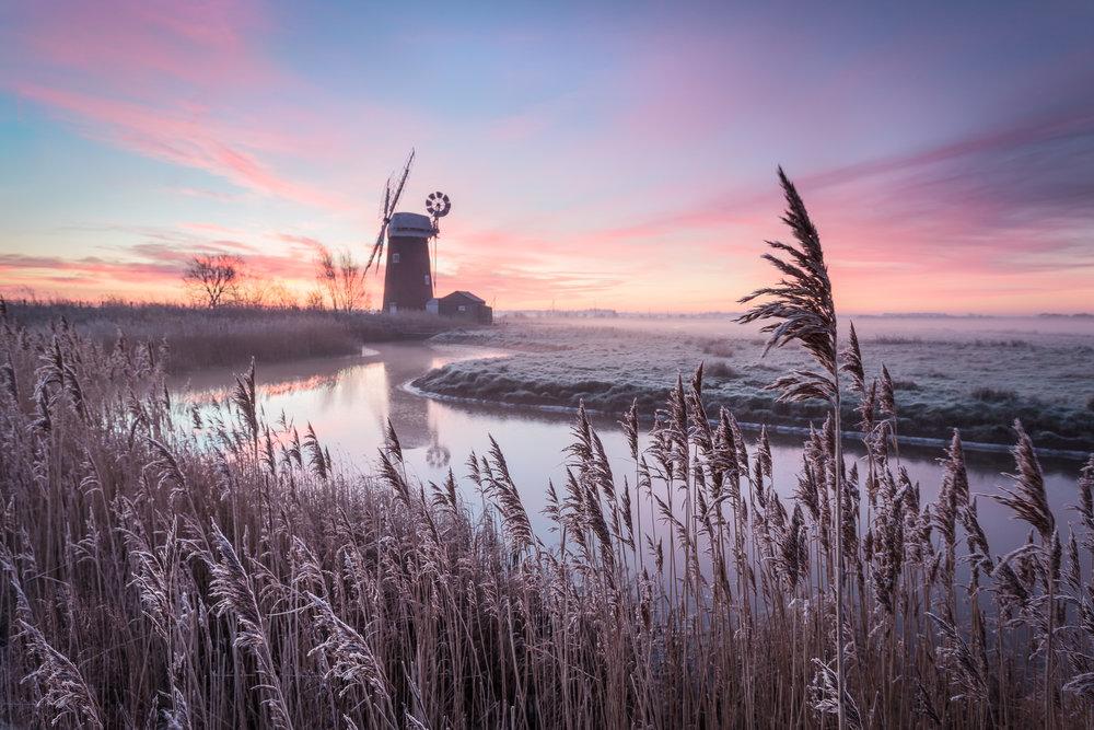 A frosty dawn - Horsey, Norfolk